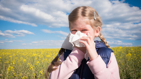 Hay Fever Prevention