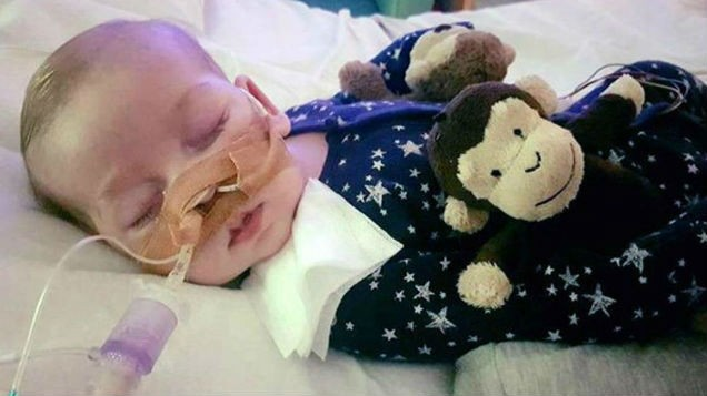 Two worldwide experts to attend meeting in Charlie Gard case