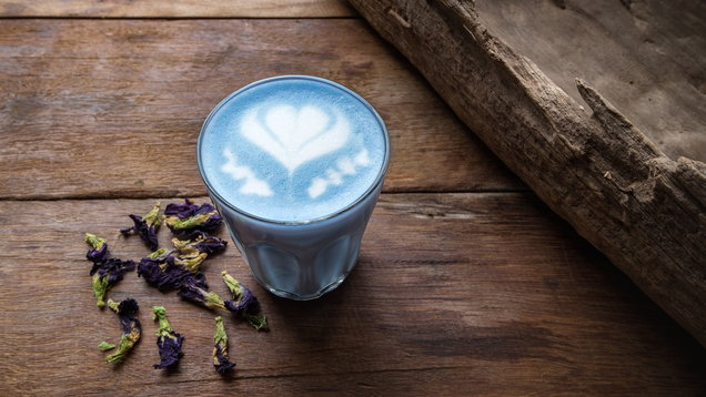 A glass of hot milk butterfly pea latte art on the wooden table in coffee shop