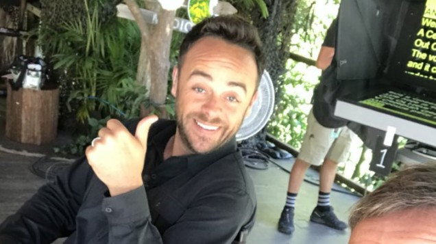 Ant McPartlin SLAMS 'meltdown' claims on Twitter