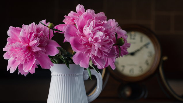 Peonies in a vase. (Thinkstock/PA)