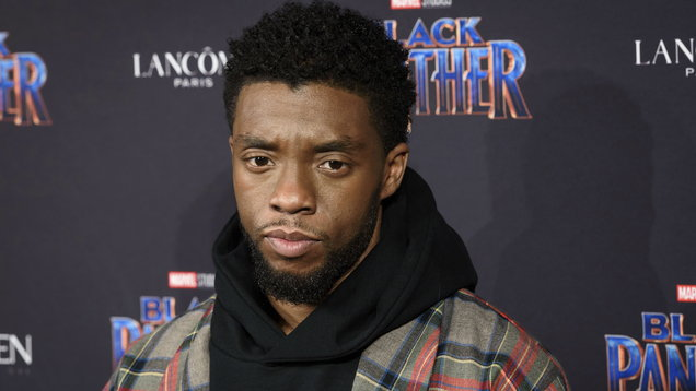 Chadwick Boseman stars in Black Panther