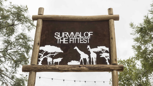 Survival Of The Fittest crowns winning team - Entertainment News