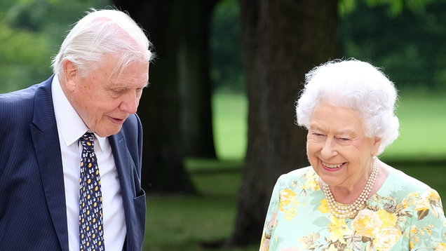 Network of forests across Commonwealth will be 'wonderful legacy' to the Queen