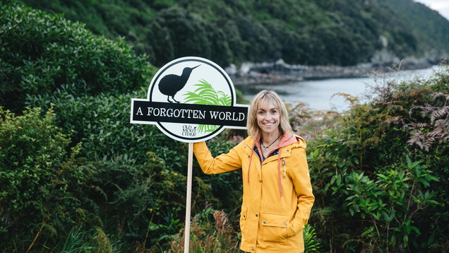Michaela Strachan's mission to save the kiwi: 'Unless something's done, they will go extinct'