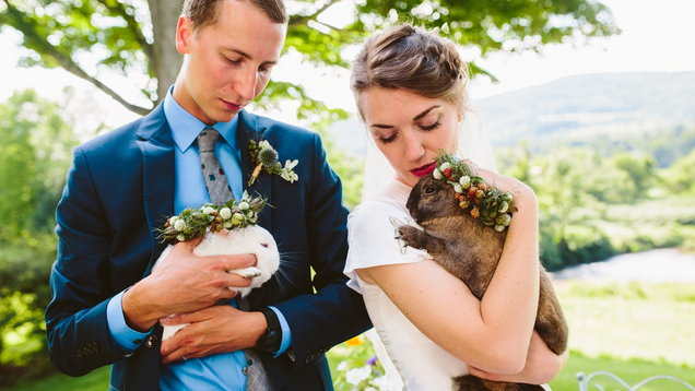 PA Real Life - Emma Zucker - rabbit double wedding