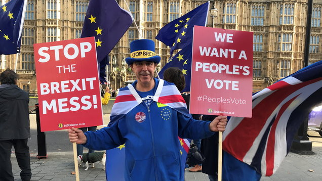 Steve Bray, who regularly protests against Brexit outside the Houses of Parliament