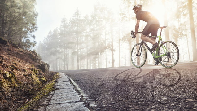 Professional Cyclist on a forest road