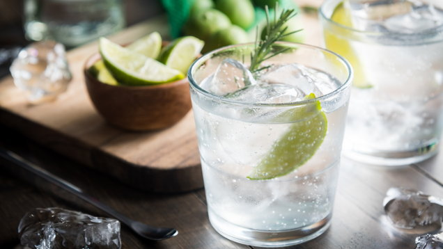 fresh gin tonic
