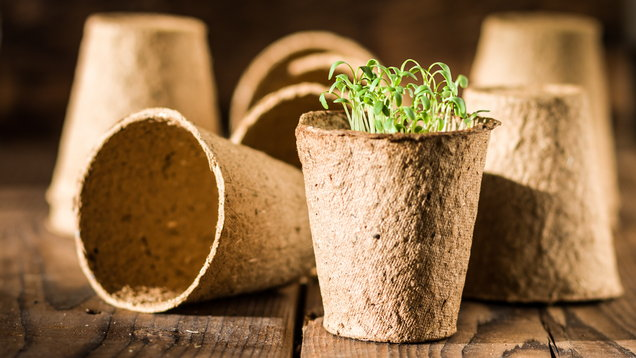 How to make your garden a plastic-free zone