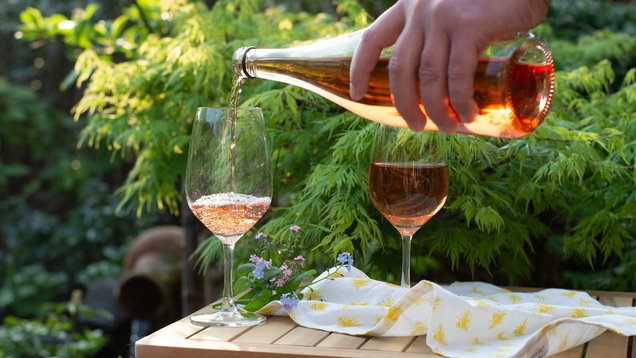 Waiter pouring cold rose wine in glasses on outdoor terrace in garden in sunny day