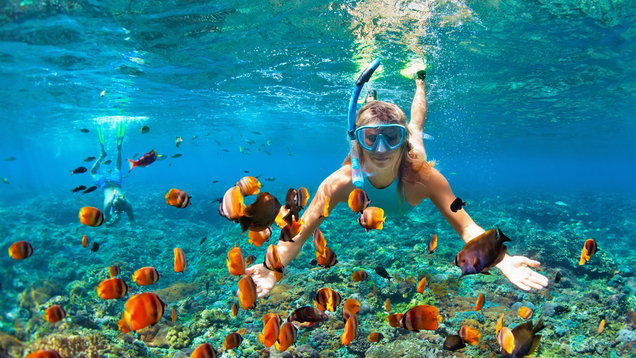 Happy couple snorkeling underwater over coral reef