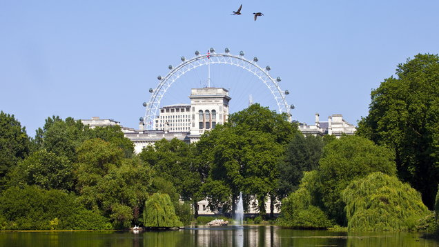 View from St. James Park in London on a clear day