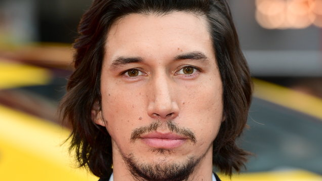 Plea from 'Star Wars' star Adam Driver helps find director's lost dog